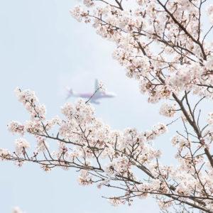 event_spring