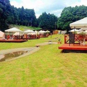 THE FARM(CAMP)